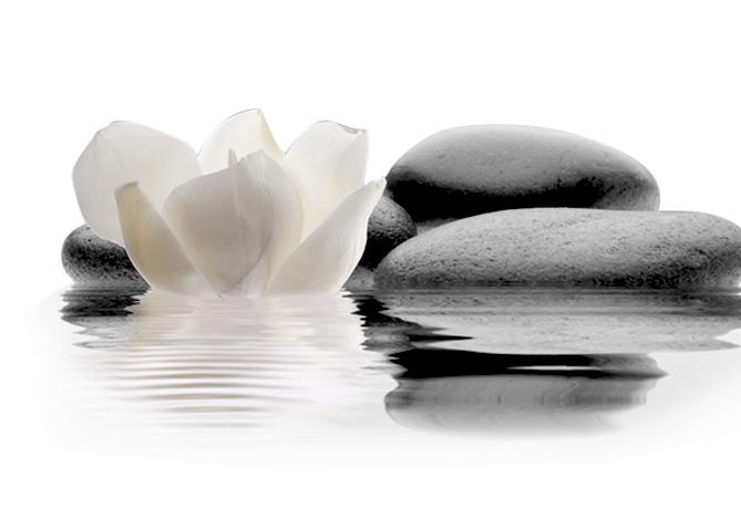 Patricia TRÉANTON. Séances de Reikiologie et Relaxologie de pleine conscience, Relaxation méditative par le toucher dans le Finistère 29. Guipavas, Plomodiern et Ploemeur - Membre de la FFRT-